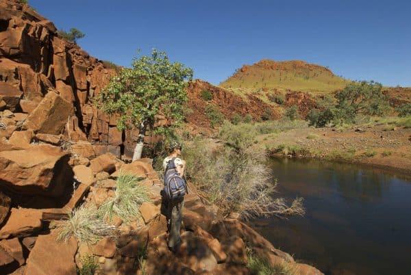 105813 Tourism Western Australia Paraburdoo Millstream National Park