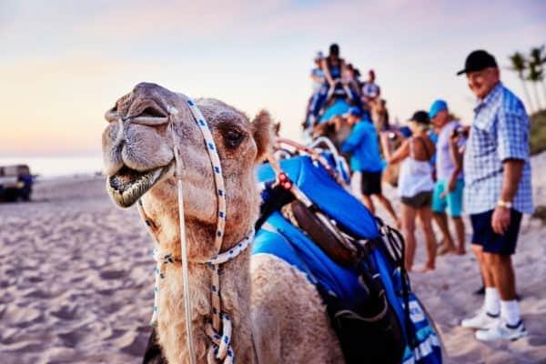 112785 Tourism Western Australia Broome