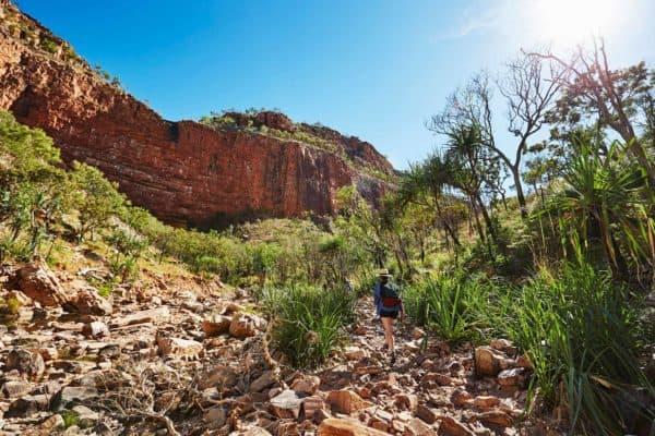 113367 Tourism Western Australia El Questro