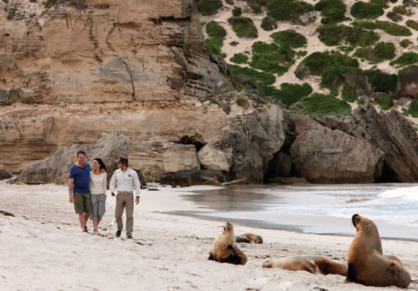 141689 57 Kirkhope Aviation Kangaroo Island