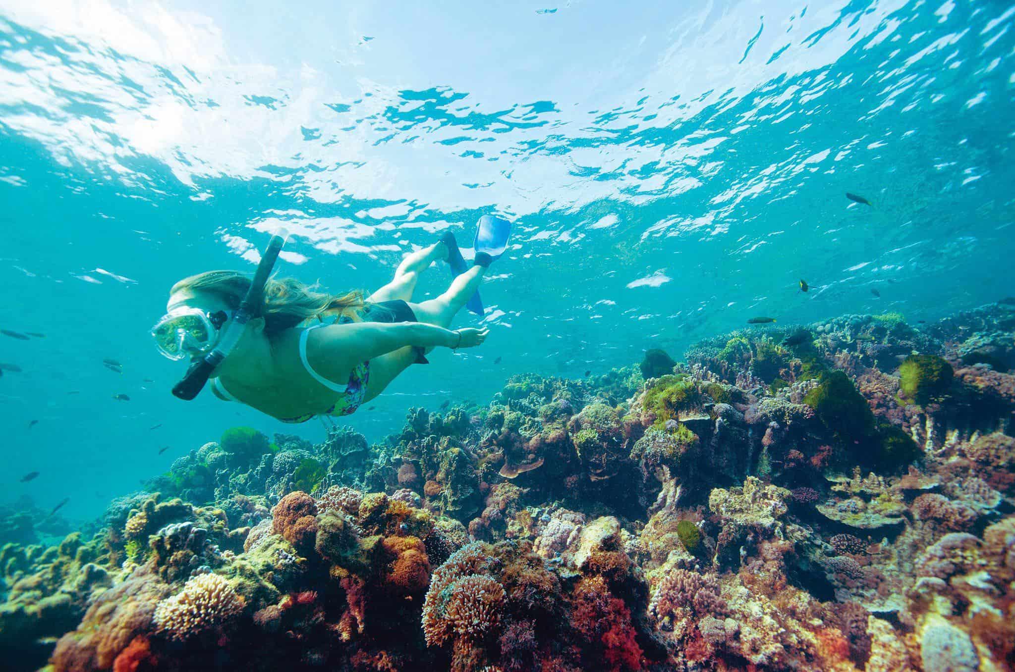49957 56 Destination NSW Lord Howe Island