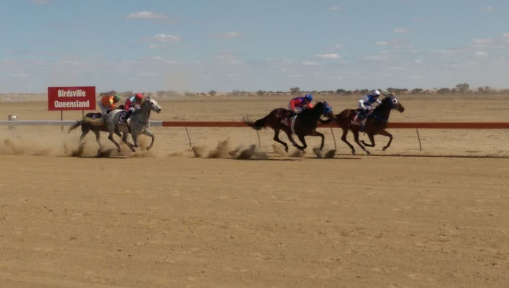 IMAG5876 Kirkhope Aviation Birdsville Races