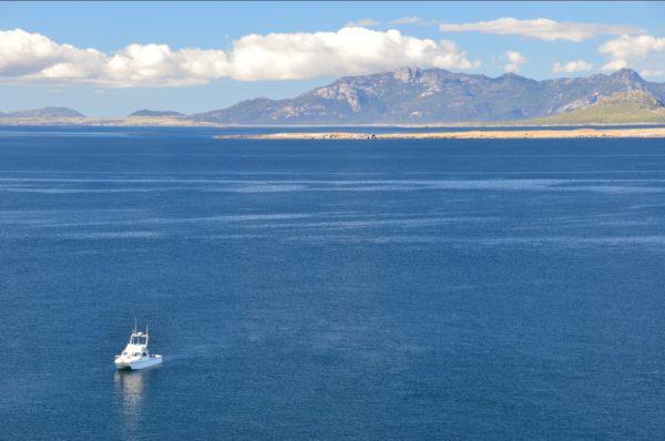 Fishing Flinders Island