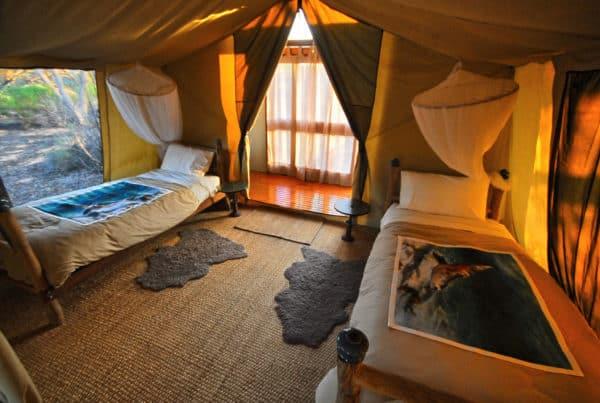 Gawler Tent Bedroom 2 Kirkhope Aviation Kangaluna And Gawler Ranges