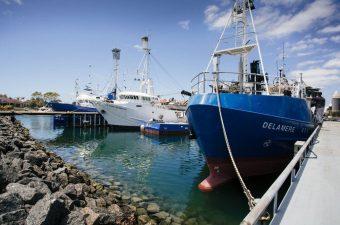 Fishing Boats ACS