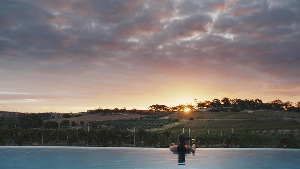 Infinity Edge Lap Pool Overlooking The Vines