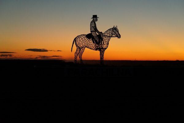 Parachilna Horse By Tony S.small