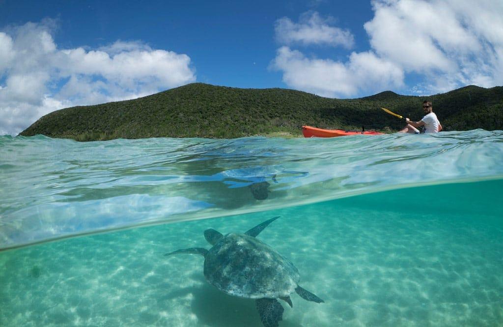 Arajilla Landscapes Turtle Kayak 1024x665 1