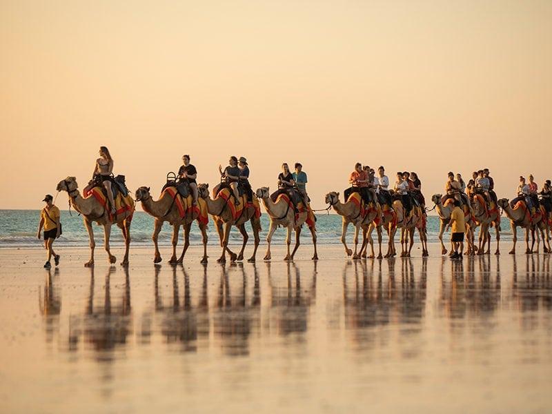Cable Beach Camel Ride CR Tourism WA