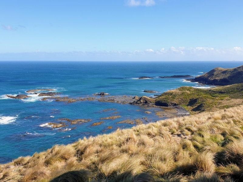 Cape Grim 1