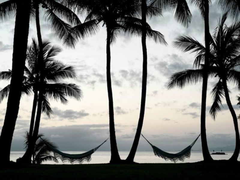 Relaxo Grando Orpheus Island