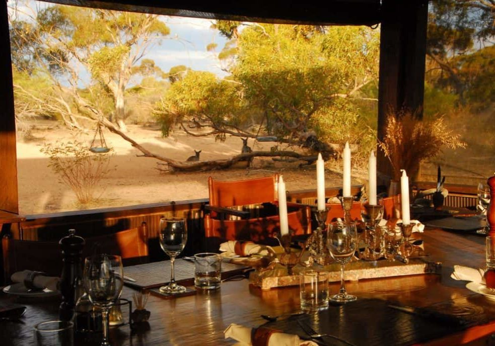 Dining Room With Kangaroos In Back Ground Kirkhope Aviation Kangaluna And Gawler Ranges